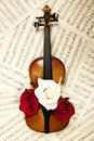 Old violin with musical notes and roses Stock Images
