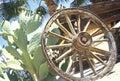 Old Wagon Wheel and Cactus, Anza-Borrego Desert State Park, California Royalty Free Stock Photo