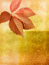 Old wall background with autumnal leaves Royalty Free Stock Image
