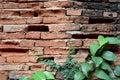 Old Wall Brick Cracks And Gree...