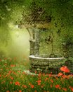 Old well on a poppy meadow vintage green with flowers Stock Image