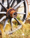 Old wheel wagon at a farm Royalty Free Stock Photos