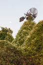 Old Windmill Eaten by Vegetacion Royalty Free Stock Photo