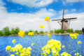 Old windmill in Kinderdijk-Elshout Netherlands Royalty Free Stock Photo