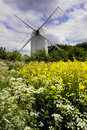 Old Windmill with Oilseed and wild flowers Stock Images