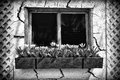 Old Window in a Cracked Wall with a Flower Box - Royalty Free Stock Photo