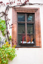 An old window with a flowerpot Royalty Free Stock Photography