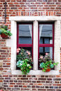 An old window with a flowerpot Stock Image