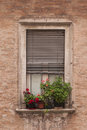 Old window italia urbino beautiful rustical with flowers Royalty Free Stock Images
