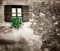 Old window with a shutter Royalty Free Stock Photo