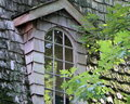 Old window transom sitting on a wood shingled roof that is covered in moss a tree branch is seen in front of the and is Stock Photo