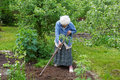 The old woman with a chopper works in a  garden Royalty Free Stock Photo