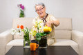 Old woman flowers care in house on sofa wetting using cup Royalty Free Stock Photography