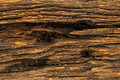Old wood background tree thailand Royalty Free Stock Photo