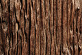 Old wood cracked texture Royalty Free Stock Photo