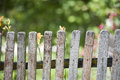 Old wood fence Royalty Free Stock Photo