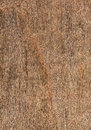 Old wood texture high resolution Royalty Free Stock Images
