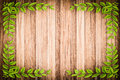 Old wooden background with green floral frame Royalty Free Stock Photo