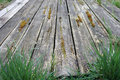 Old wooden beams covered with moss and grass Royalty Free Stock Photos