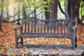 Old wooden bench in arboretum park with autumn foliage and trees on background Royalty Free Stock Photography