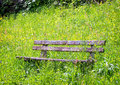 Old wooden bench at a meadow Royalty Free Stock Photos