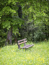 Old wooden bench at a meadow Stock Photo
