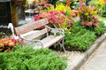 Old wooden benches in the outdoor garden among the many colorful plants at royal park rajapruek chiang mai thailand Stock Image