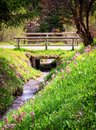 Old wooden bridge beautiful at a creek Stock Images