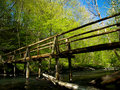 Old wooden bridge in the woods Royalty Free Stock Photo