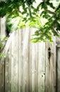 Old wooden door in the garden. Summer background. Royalty Free Stock Photo