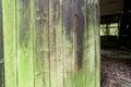 Old Wooden Door and Green Lichen
