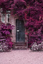 Old wooden door of stone house with alternate surreal colored la