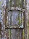 Old wooden door with lichen and moss and a small frame - vertical background texture Royalty Free Stock Photo