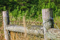 Old wooden fence in a field the poles of wrapped with wire stands the tall grass of Stock Images