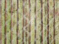 Old wooden fence photographed over the net Stock Photography