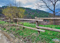 Old wooden fence, trees, green grass, and blue cloudy sky on green meadow Royalty Free Stock Photo