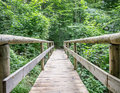 Old wooden footbridge beautiful at a forest Royalty Free Stock Image
