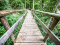Old wooden footbridge beautiful at a forest Royalty Free Stock Images