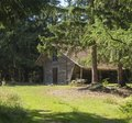 Old wooden mountain house log cabin built from wood in spruce tree forest on summer sunny day Royalty Free Stock Photo