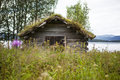 Old wooden shed really in lapland sweden grass is growing on the roof the is falling apart and slowly going back to nature Royalty Free Stock Image
