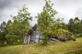 Old wooden shed really in lapland sweden grass is growing on the roof the is falling apart and slowly going back to nature Stock Photo