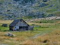 Old wooden sheepfold and the flock sheep in romania Stock Image