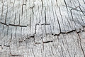 Old wooden texture of wood in the context monochrome Stock Photography