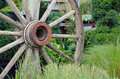Old wooden wagon wheel in green garden setting Royalty Free Stock Image