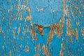 Old wooden wall with blue paint pealing off abstract texture Stock Images