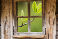 Old Wooden Window Frame, Sprin...