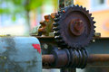 Old worm gear from by sluice small city saarburg rheinland pfalz germany Royalty Free Stock Image