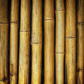 The old yellow bamboo fence background texture Royalty Free Stock Photo