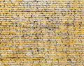 Old yellow brick wall background texture Royalty Free Stock Images