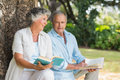 Older couple reading books together sitting on tree trunk at the park sunny day Stock Photo